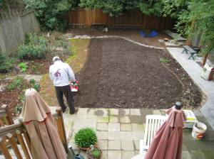 planting new grass seed